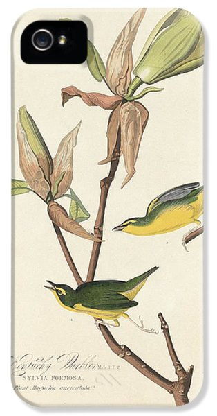 Kentucky Warbler IPhone 5 / 5s Case by John James Audubon