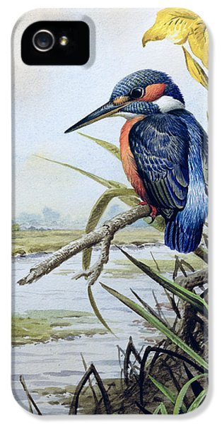 Kingfisher With Flag Iris And Windmill IPhone 5 / 5s Case by Carl Donner