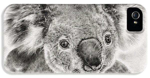 Koala Newport Bridge Gloria IPhone 5 / 5s Case by Remrov