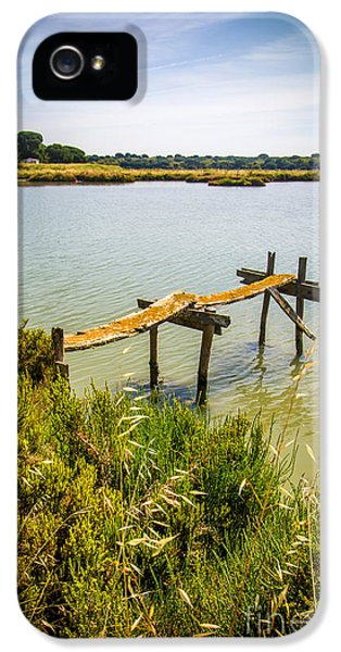 Poles iPhone 5 Cases - Lake and Pier iPhone 5 Case by Carlos Caetano
