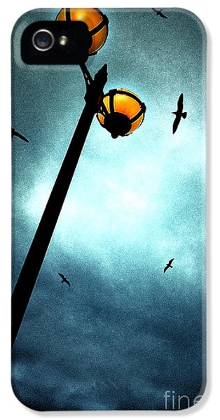 Circling iPhone 5 Cases - Lamps With Birds iPhone 5 Case by Meirion Matthias