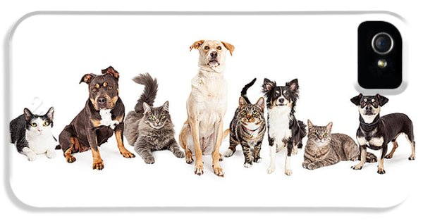 Large Group Of Cats And Dogs Together IPhone 5 / 5s Case by Susan Schmitz