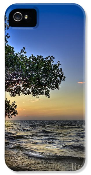 Bayou iPhone 5 Cases - Last Light iPhone 5 Case by Marvin Spates