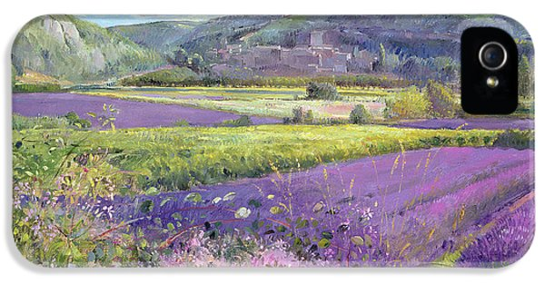 Meadow iPhone 5 Cases - Lavender Fields in Old Provence iPhone 5 Case by Timothy Easton