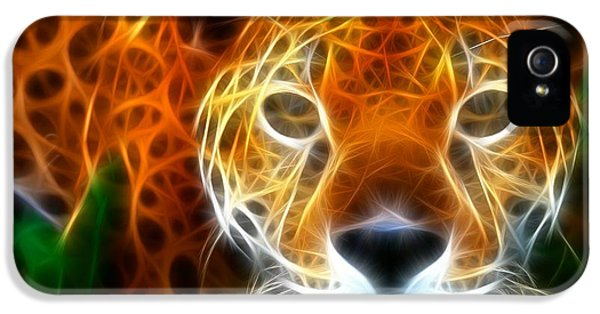 Leopard Watching At His Prey IPhone 5 / 5s Case by Pamela Johnson