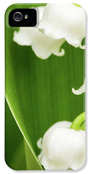 Lily Of The Valley IPhone 5 / 5s Case by Wim Lanclus