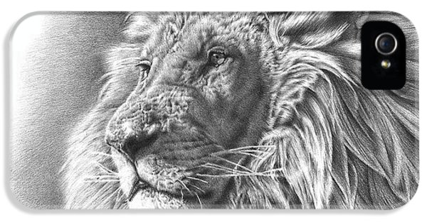 Lion Drawing IPhone 5 / 5s Case by Remrov Vormer
