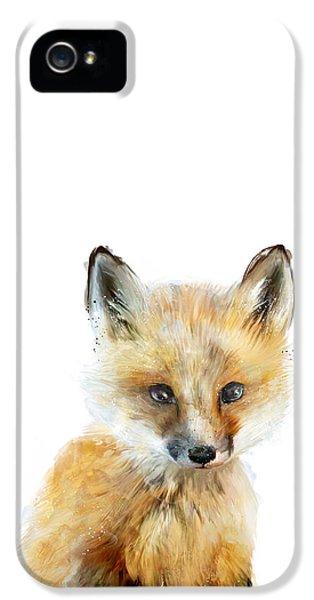 Fox iPhone 5 Cases - Little Fox iPhone 5 Case by Amy Hamilton