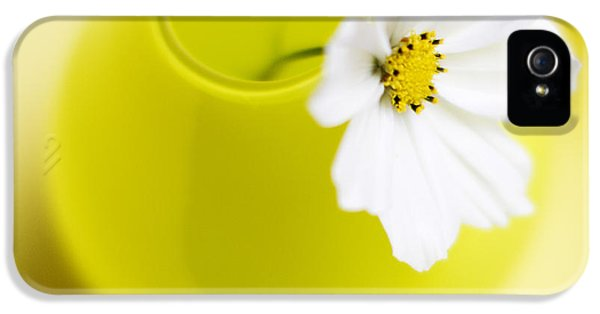 Flower iPhone 5 Cases - Little Yellow Vase iPhone 5 Case by Rebecca Cozart