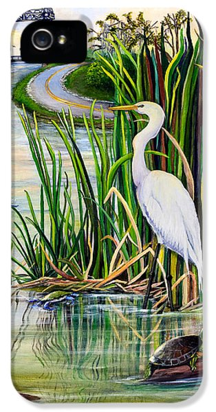Fishing iPhone 5 Cases - Louisiana Wetlands iPhone 5 Case by Elaine Hodges