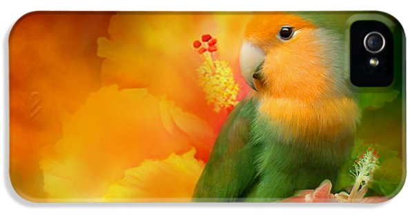 Love Among The Hibiscus IPhone 5 / 5s Case by Carol Cavalaris
