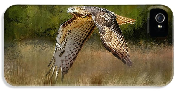 Low Flyer-northern Harrier IPhone 5 / 5s Case by Donna Kennedy