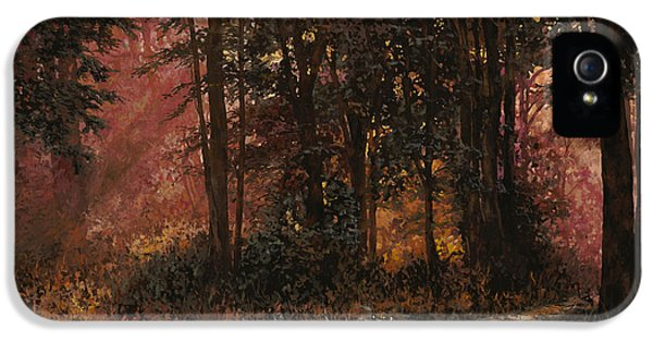 Bush iPhone 5 Cases - Luci Nel Bosco iPhone 5 Case by Guido Borelli