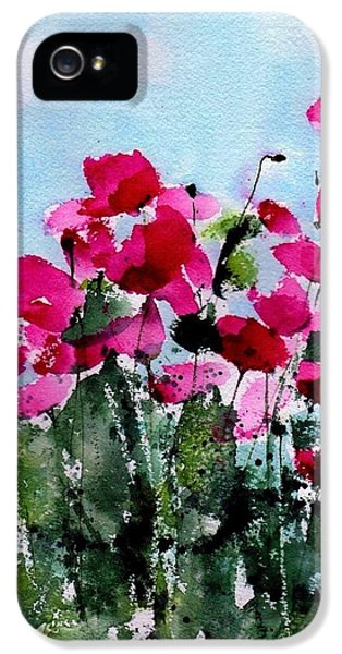 Poppy iPhone 5 Cases - Maddys Poppies iPhone 5 Case by Anne Duke