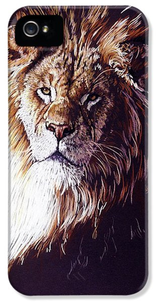 Maestro IPhone 5 / 5s Case by Barbara Keith