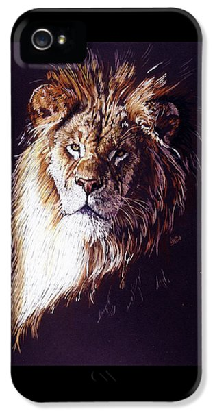 Lion iPhone 5 Cases - Maestro iPhone 5 Case by Barbara Keith