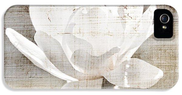 Tender iPhone 5 Cases - Magnolia flower iPhone 5 Case by Elena Elisseeva
