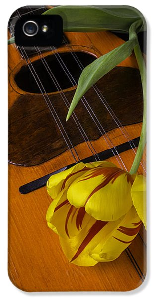 Dewdrop iPhone 5 Cases - Mandolin With Red And Yellow Tulip iPhone 5 Case by Garry Gay