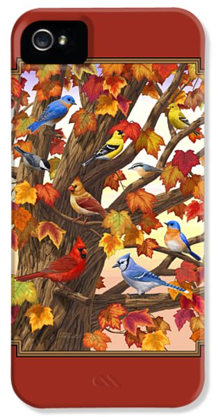 Maple Tree Marvel - Bird Painting IPhone 5 / 5s Case by Crista Forest