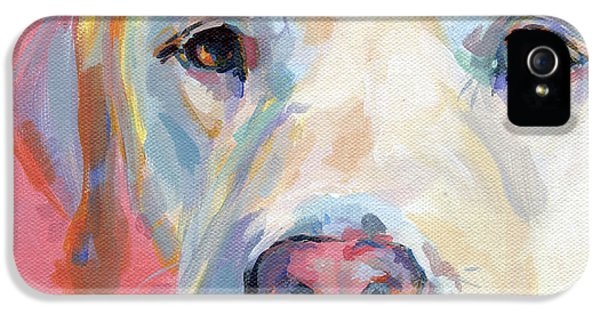 Eyes iPhone 5 Cases - Marthas Pink Nose iPhone 5 Case by Kimberly Santini