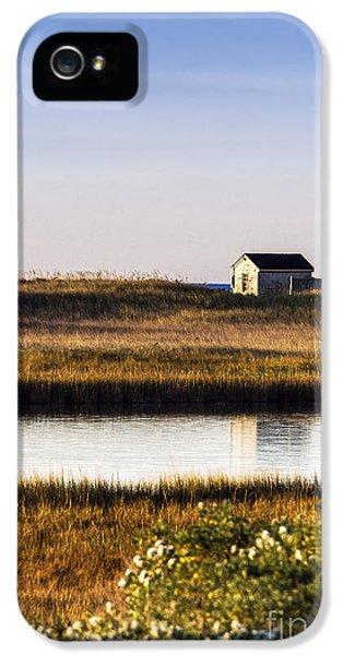 Shanty iPhone 5 Cases - Marthas Vineyard Beach Shack iPhone 5 Case by John Greim