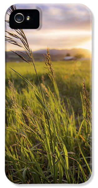 Meadow Light IPhone 5 / 5s Case by Chad Dutson