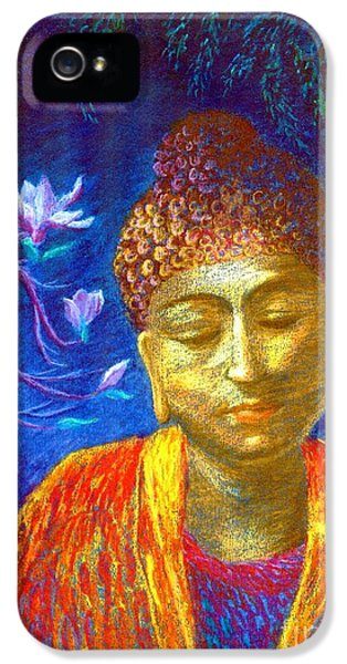 Meeting With Buddha IPhone 5 / 5s Case by Jane Small