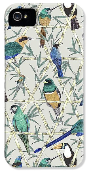 Menagerie IPhone 5 / 5s Case by Jacqueline Colley