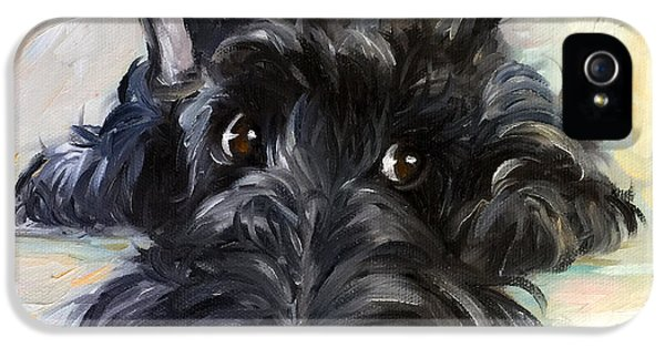 Scottie iPhone 5 Cases - Mischief iPhone 5 Case by Mary Sparrow