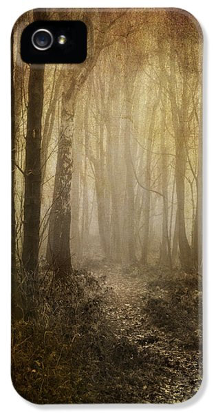 Aged iPhone 5 Cases - Misty Woodland Path iPhone 5 Case by Meirion Matthias