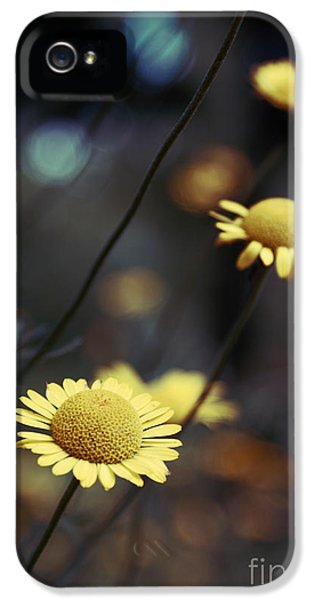 Flower iPhone 5 Cases - Momentum iPhone 5 Case by Aimelle