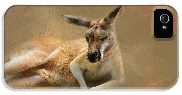 Monday Morning Drowsies Kangaroo Art IPhone 5 / 5s Case by Jai Johnson