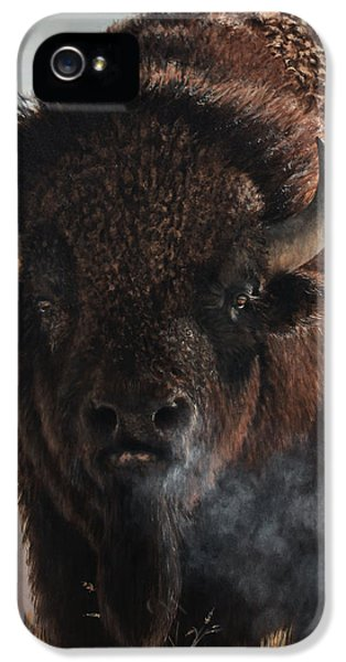 Horn iPhone 5 Cases - Morning in the Foothills  iPhone 5 Case by Rob Dreyer AFC