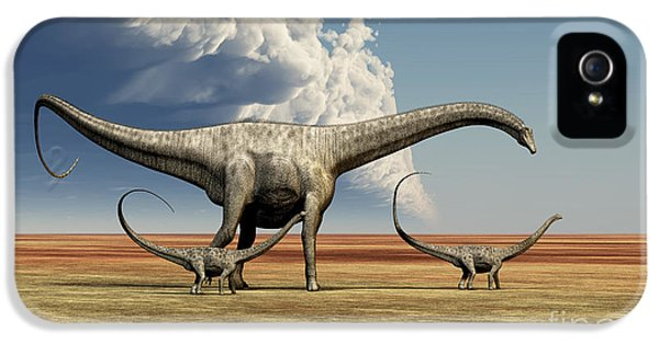 Roaming iPhone 5 Cases - Mother Diplodocus Dinosaur Walks iPhone 5 Case by Corey Ford
