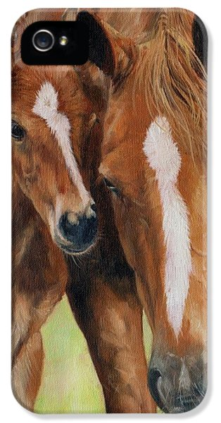 Equine iPhone 5 Cases - Mother Love iPhone 5 Case by David Stribbling