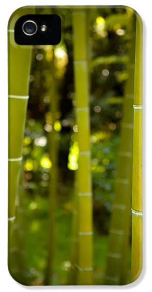 Mystical Bamboo IPhone 5 / 5s Case by Sebastian Musial