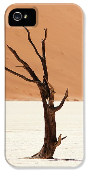 Namib Desert IPhone 5 / 5s Case by Stephen Smith