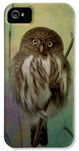 Northern Owl iPhone 5 Cases - Northern Pygmy Owl  iPhone 5 Case by Reflective Moment Photography And Digital Art Images