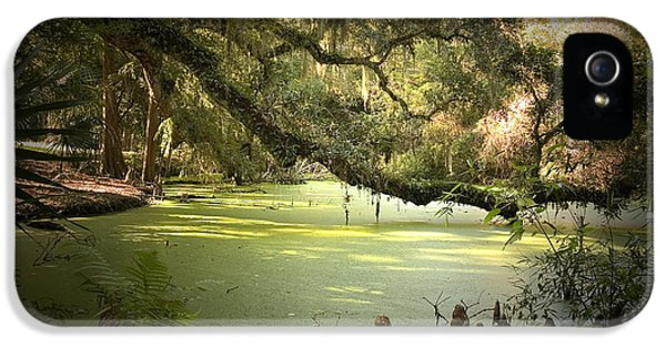Bayou iPhone 5 Cases - On Swamps Edge iPhone 5 Case by Scott Pellegrin