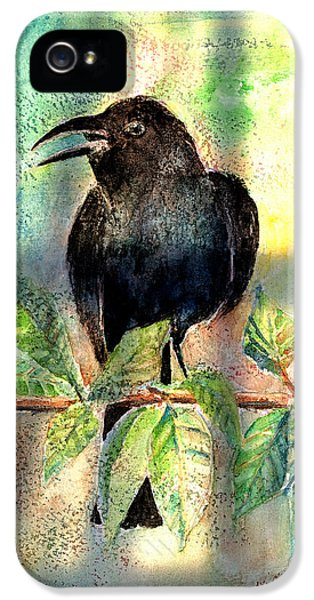 On The Outside Looking In IPhone 5 / 5s Case by Arline Wagner