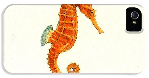 Orange Seahorse IPhone 5 / 5s Case by Juan Bosco