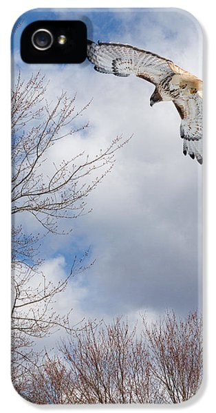 Redtail iPhone 5 Cases - Out of the blue iPhone 5 Case by Bill  Wakeley