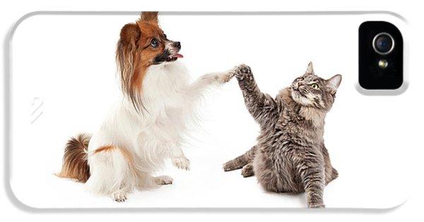 Papillon Dog And Cat High Five IPhone 5 / 5s Case by Susan Schmitz