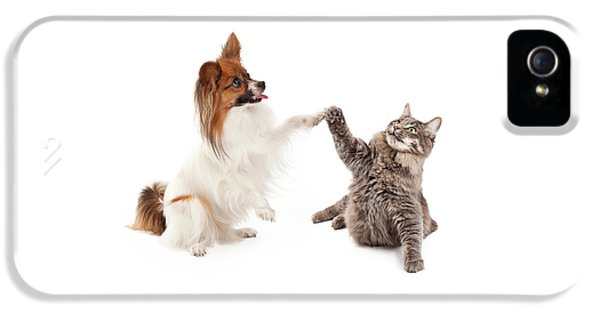 Greet iPhone 5 Cases - Papillon Dog and Cat High Five iPhone 5 Case by Susan  Schmitz