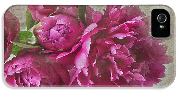 Pink Flowers iPhone 5 Cases - Peonies iPhone 5 Case by Rebecca Cozart
