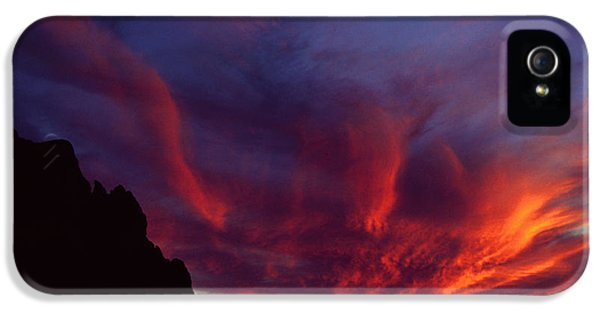 Phoenix Risen IPhone 5 / 5s Case by Randy Oberg