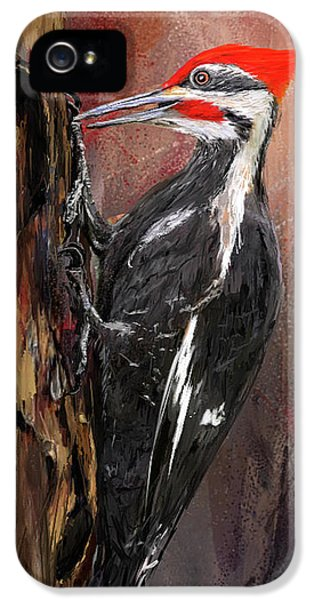 Pileated Woodpecker Art IPhone 5 / 5s Case by Lourry Legarde