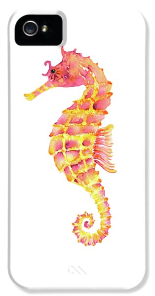 Pink Yellow Seahorse - Square IPhone 5 / 5s Case by Amy Kirkpatrick