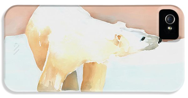 Polar Bear IPhone 5 / 5s Case by Arline Wagner