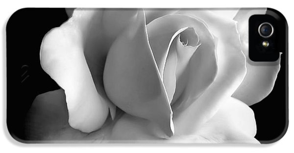 Monochrome iPhone 5 Cases - Porcelain Rose Flower Black and White iPhone 5 Case by Jennie Marie Schell